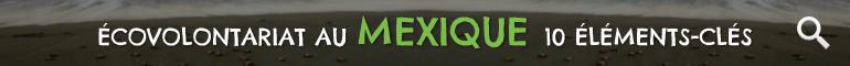 Ecovolontariat au Mexique 10 Éleménts-Clés