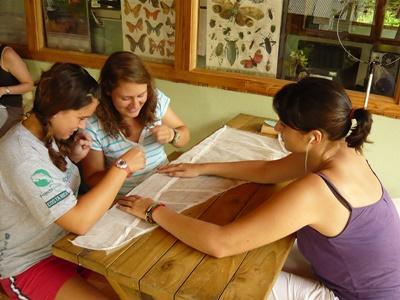 Préservation de l'environnement au Costa Rica