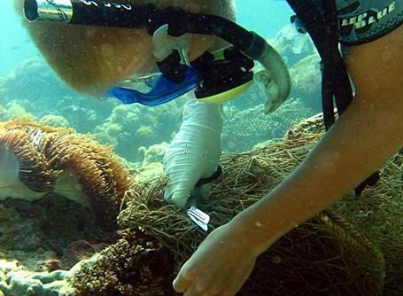 Volontaire coupant un filet dans l'eau