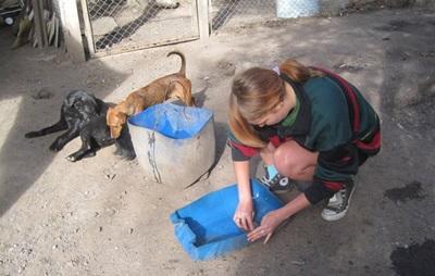 S'occuper des animaux en Argentine