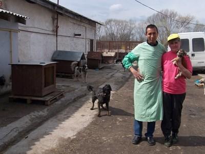 Soins animaliers Roumanie