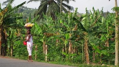 Stage finance dans le micro-crédit au Ghana
