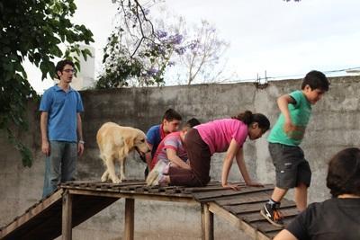 Des volontaires participent à un projet de thérapie canine