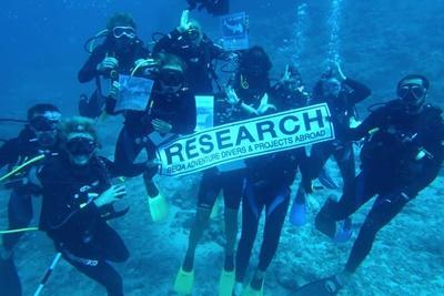 Un groupe de volontaires lors d'une plongée aux Fidji sur le projet de protection des requins
