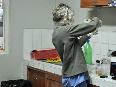 Stagiaire professionnel en nutrition en train de travailler au Pérou