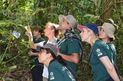 Un groupe de volontaire en mission d'écovolontariat au Pérou observant la faune et la flore sauvage