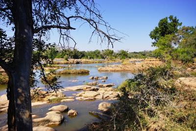 Cours d'eau au Botswana lors d'une mission d'écovolontariat
