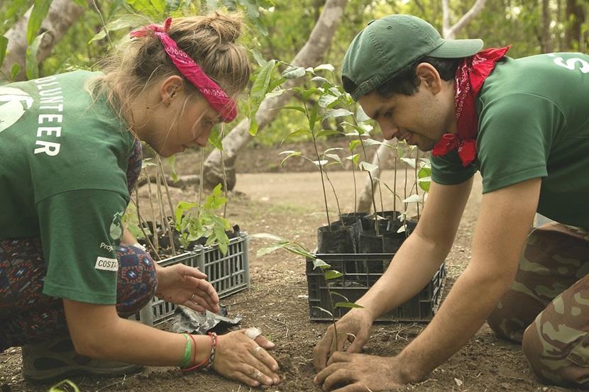 Un volontaire en écovolontariat aide à planter un arbre au parc national Barra Honda, au Costa Rica.