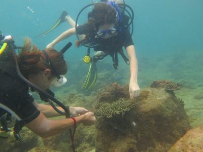Conservation volunteers in Cambodia participate in a dive on their volunteer vacation