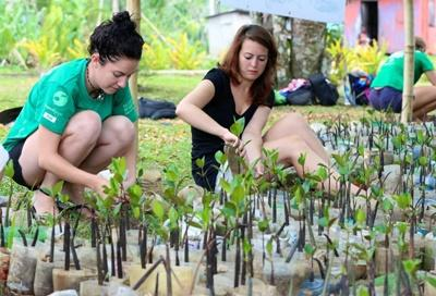 Voluntourism opportunities in the field of conservation in Fiji