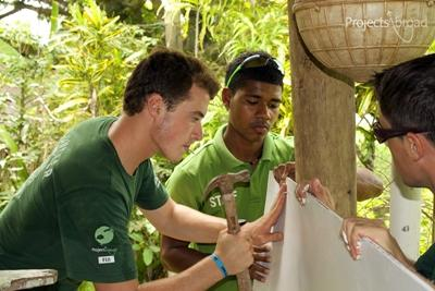 Projects Abroad volunteers help to construct a wall at a care centre in Fiji during a community day.
