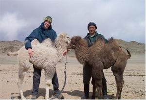 Volunteer Nomad Projects in Morocco and Mongolia