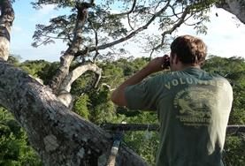 A volunteer observes wild birds in the Amazon in Peru during his Easter break.