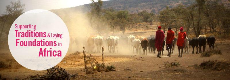 Maasai mara men herding their cattle down a road in Endulen, Tanzania.