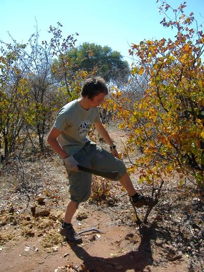 Volunteer on the Conservation project in South Africa cleaning up bushes in the wild