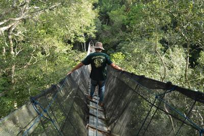 Above the canopy of the Amazon Rainforest, a volunteer observes wildlife on the Conservation in Peru Alternative Spring Break Trip