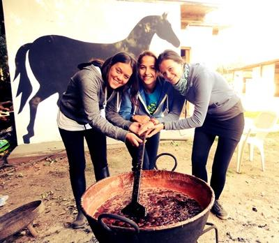 Projects Abroad volunteers assist with maintenance work at the horse stables at their Equine Therapy placement in Argentina.