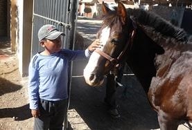 A child interacts with a horse at the Equine Therapy volunteer Project in Bolivia.
