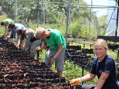 A group of Projects Abroad volunteers work at a nursery for endemic plant species in the Galapagos Islands, Ecuador.