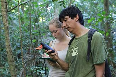 Projects Abroad staff member and volunteer work together to conduct a survey in the jungle in Peru.