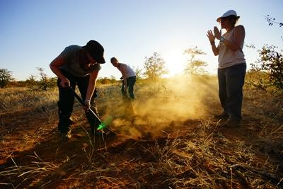 Projects Abroad volunteers help remove alien vegetation at a wildlife reserve in Botswana, southern Africa.