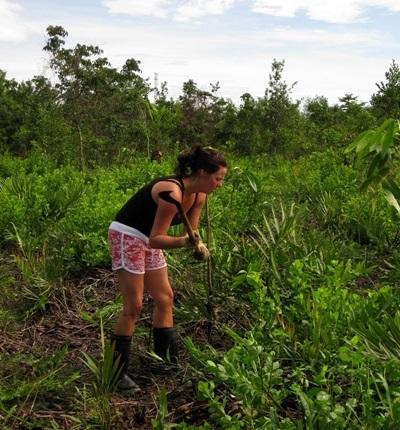 A Projects Abroad volunteer helps clear vegetation at the Conservation Project in Thailand.