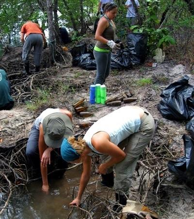 A group of Projects Abroad volunteers clean up mangroves as part of their Conservation Project in Thailand.
