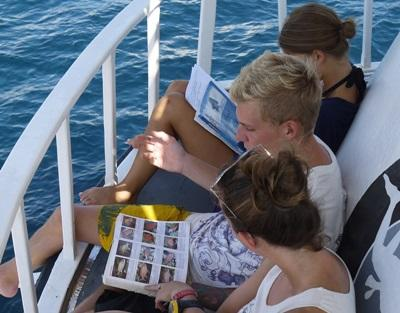 Projects Abroad volunteers study the various fish species that can be found off the coast of Krabi, Thailnd