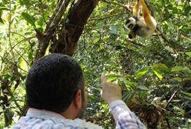 A volunteer on the Rainforest Conservation Project in Madagascar conducts a survey of wildlife he spots.
