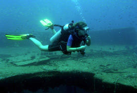 Diving and Marine Conservation volunteer observes marine life during a dive in Thailand.