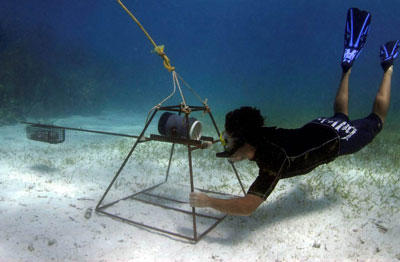 A Projects Abroad volunteer operates observation equipment underwater at the Shark Conservation Project in Fiji.