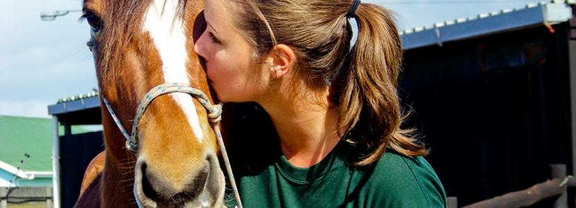 Volunteer abroad with animals by joining a Projects Abroad High School Special in developing countries.