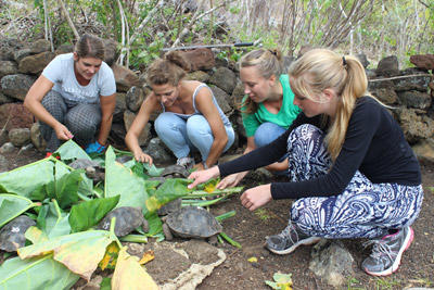 High School Special volunteers provide food for tortoises at a wildlife centre in the Galapagos Islands, Ecuador.