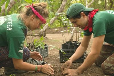 Projects Abroad volunteer plants a sapling with local staff member in the camping area of Barra Honda National Park, Costa Rica.