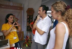 Business interns discuss a strategy with a local entrepreneur on their internship in Costa Rica.