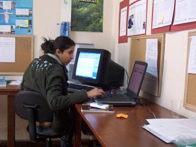 A Journalism intern works on an article for a local newspaper at her Projects Abroad placement in Bolivia.