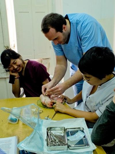 A Medical School Elective student practices stitching with local medical staff at a hospital in Argentina.