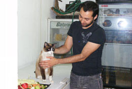 A professional vet volunteering in Mexico treats a cat at a clinic.