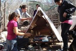 A group of interns build a kennel at a dog shelter during their Veterinary Medicine & Animal Care Project in Argentina.